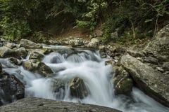 wild bergflod Royaltyfri Bild