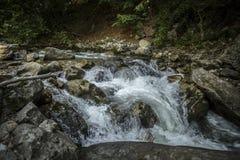 wild bergflod Royaltyfri Fotografi