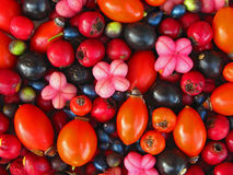 Wild berries background Royalty Free Stock Photo