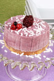 Wild berries bavarian cream (bavarese) Stock Photography