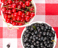 Wild berries in bowls Royalty Free Stock Photography