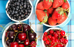 Wild berries in bowls Royalty Free Stock Images