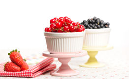 Wild berries in bowls Stock Photography