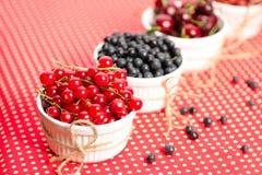 Wild berries in bowls Stock Photos