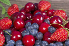 Wild berries and cherries Stock Photos