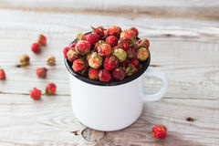 Wild berries in a cup. Royalty Free Stock Image