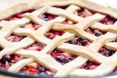 Wild berries dessert Stock Image