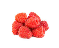 Wild berries Royalty Free Stock Photos