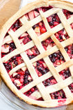 Wild berries pie Royalty Free Stock Images