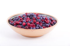 Wild berries on a plate Royalty Free Stock Images
