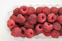 Wild berries: raspberries Royalty Free Stock Photo