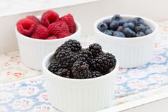 Wild berries, Raspberries, blueberries and blackberries in bowls. On nice patterned background Royalty Free Stock Photography
