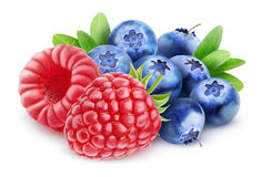 wild berries. Raspberry and blueberry fruit mix  on white with clipping path Royalty Free Stock Photo