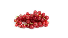 Wild berries rotating on white background stock video footage