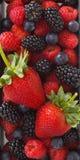 Wild berries and strawberry Stock Photo