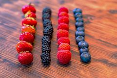 Wild berry mix - strawberries, raspberries, blackberries, blueberries and currants. A Wild berry mix - strawberries, raspberries, blackberries, blueberries and Stock Images