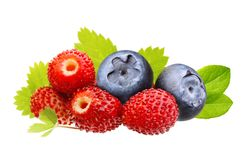 Wild berry, strawberry, blueberry isolated Stock Photo