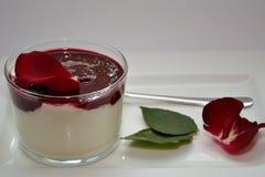 Wild berry yoghurt cream Stock Photography