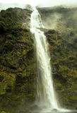 Wild Big Waterfall New Zealand Stock Photos