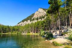 Wild Bill Lake Royalty-vrije Stock Foto