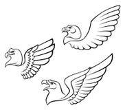 Wild bird. On a white background stock illustration