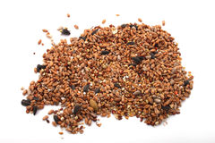 Wild bird food. Put out in a garden to feed wild birds in the winter Stock Photography