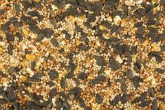 Wild bird food. Here is a background of wild bird food Stock Photo