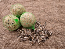 Wild bird food - fat balls and sunflower seeds on hessian Royalty Free Stock Images
