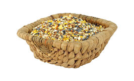 Wild bird food in wood basket Stock Image
