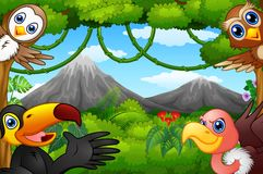 Wild birds cartoon with a mountain in a forest Royalty Free Stock Image
