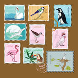 Wild birds. And nature on the stamp Royalty Free Stock Image