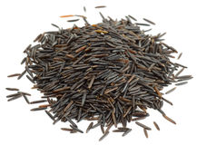 Wild black rice Royalty Free Stock Images
