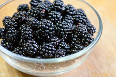 Wild blackberries. In glass bowl Royalty Free Stock Photography