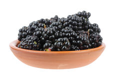 Wild blackberries in a small bowl Stock Images