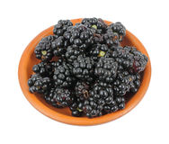 Wild blackberries in a terracotta bowl Royalty Free Stock Images