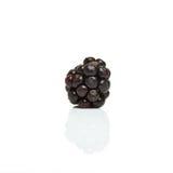 Wild blackberry Stock Photo
