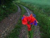 Wild bloemenboeket royalty-vrije stock afbeeldingen