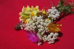 Wild bloemenboeket op rode doek stock afbeelding
