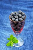 Wild blueberries with fresh green leaves in small pink wineglass Stock Photo