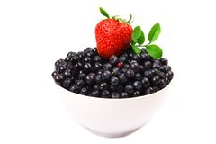 Wild blueberries & strawberry Royalty Free Stock Photography