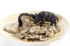 Wild boar and Black Truffle slices Stock Photography
