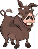 Wild boar.Cartoon Stock Images
