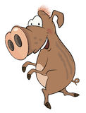 Wild boar cartoon Stock Photos