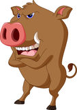 Wild boar cartoon Royalty Free Stock Photos