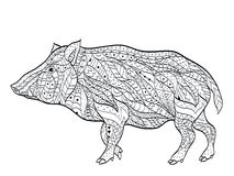 Wild boar coloring vector for adults Royalty Free Stock Images