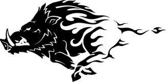Free Wild Boar Flame Stock Image - 61409281