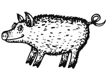 Wild boar. Hand drawn, cartoon, sketch illustration of wild boar Royalty Free Stock Photo