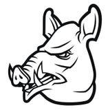 Wild boar head  in cartoon style Stock Images