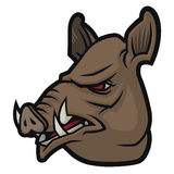 Wild boar head  in cartoon style Stock Photography