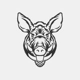 Wild boar head logo or icon in one color Royalty Free Stock Photos